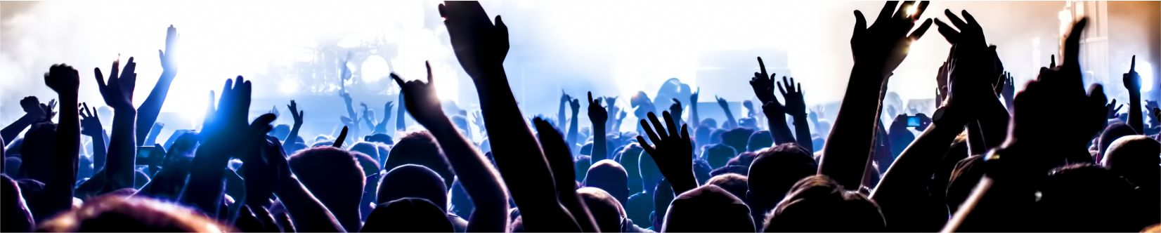 Large Group of People Enjoying a Live Music Concert